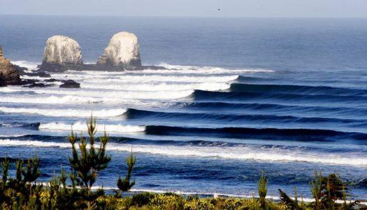En SurfBeats Festival, súmate y apoya a Fundación Punta de Lobos